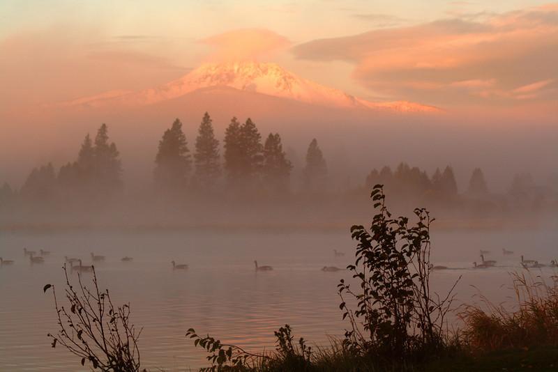 fArt-in-the-Aspens-sunrise-I.jpg