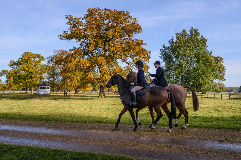 Fitzwilliam Opening meet Nov 2019-23-19.jpg
