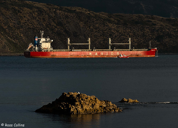 'Navios La Paix'