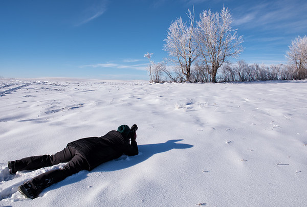 Lying in the snow, Highway 562 between Calgary and Dorothy