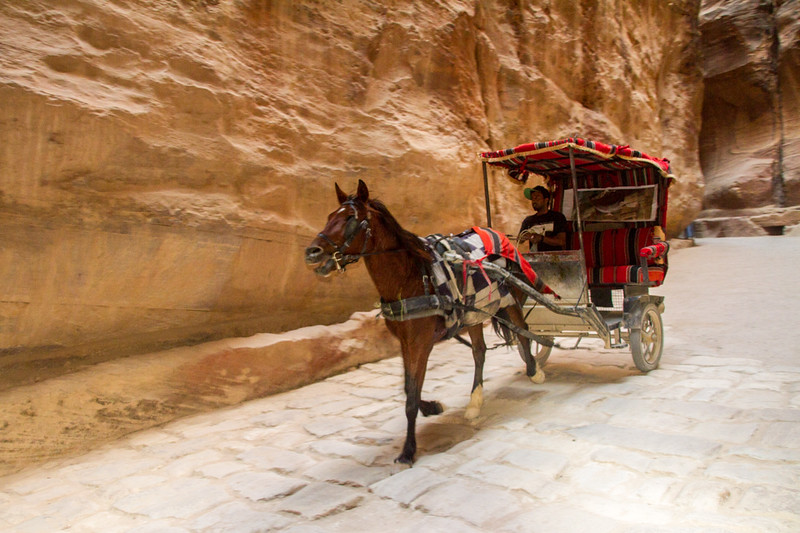 A horse and buggy is an alternative way to arrive at Petra, Jordan.
