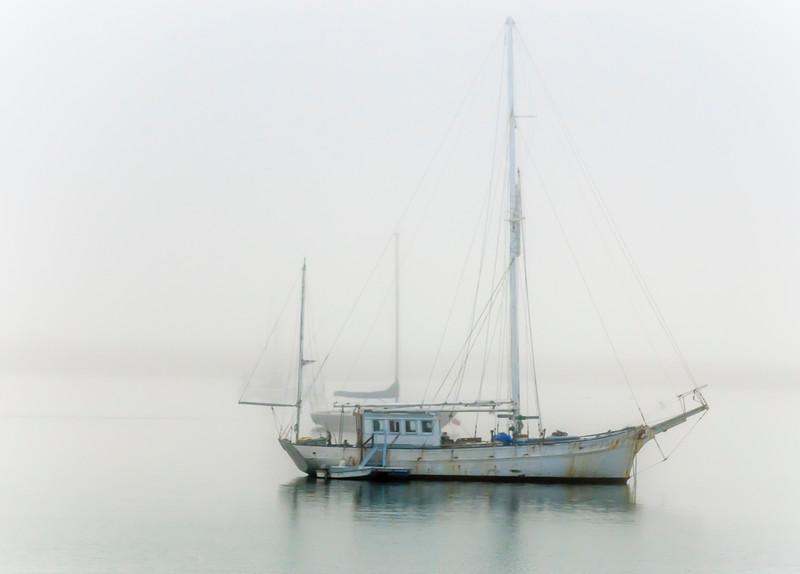 HMBay Foggy Boat.jpg