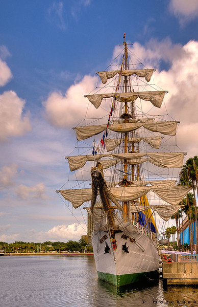 The Tall Ships