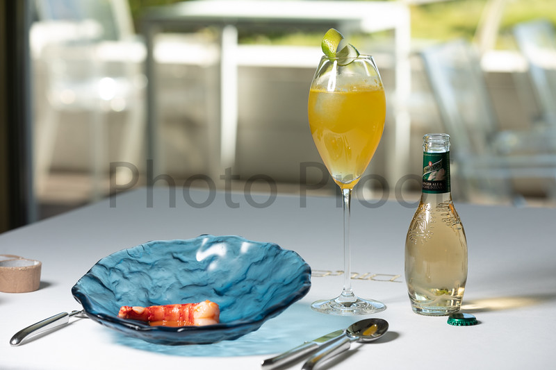 BIRDSONG Schweppes Cocktails 084.jpg