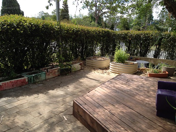 timber deck and raised veggie planters