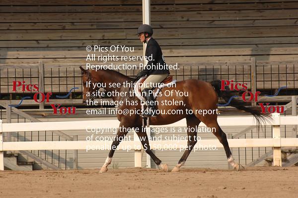 Fall Arabian Classic Sept 2011