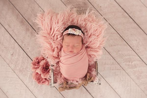 Arbogast Newborn 2019