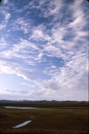 2-25-2007 4-29-29 PM_0066_resize.jpg