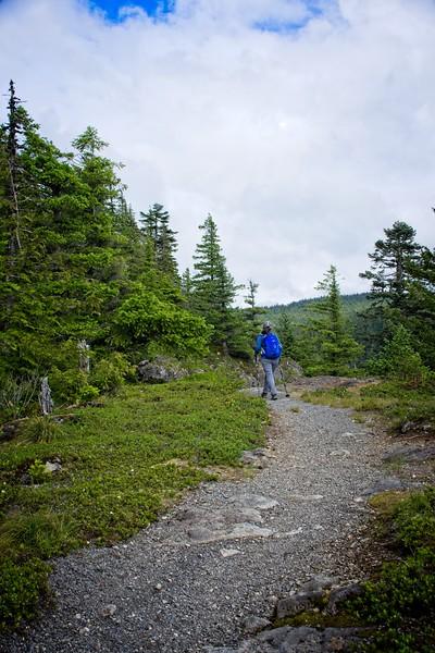 Mcintyre Ridge from the Dougls TH