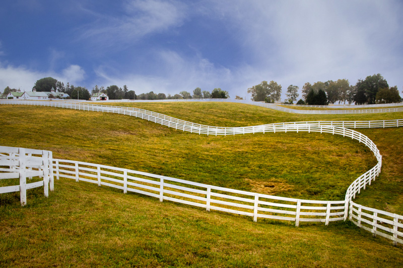 October 9 - Horse farm in the Bluegrass region of Kentucky, between Lexington and Versailles-1.jpg
