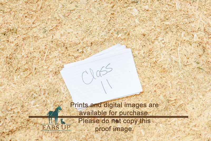 ANN_0853.jpg