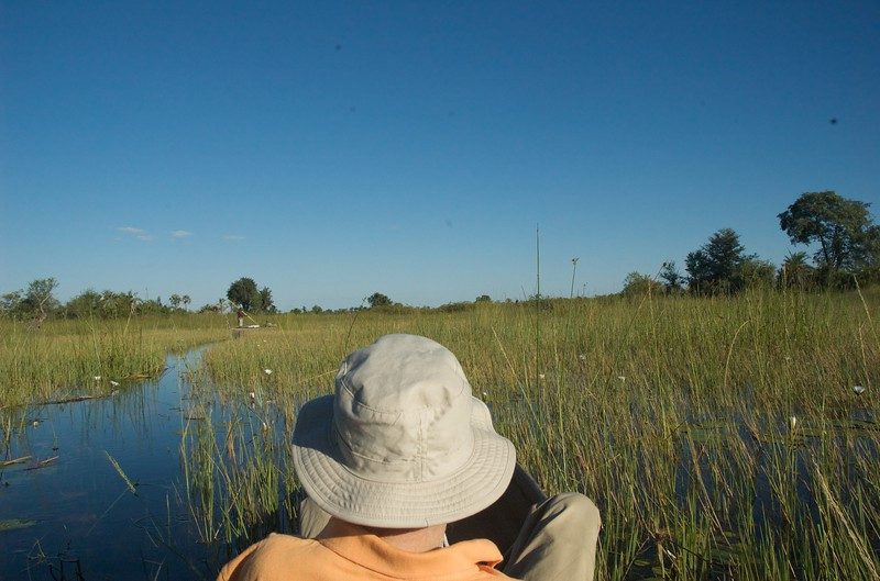 Mokoros, Okavango Delta - Leslie Rowley