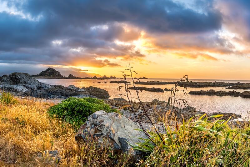 New Zealand_LyallBay_Sunrise_001.jpg