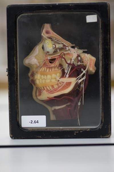 som-surgical-07-19-140.jpg