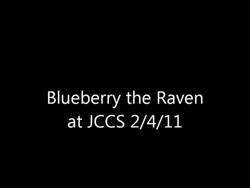 blueberry.wmv