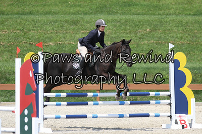 Grand Prix Ring: Level 1 Jumpers