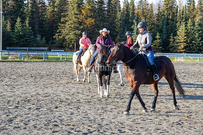 WESTERN EQUITATION - SECTION 16