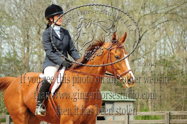Carolinas Horse Show April 5, 2014