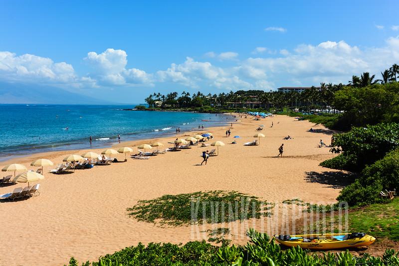 Maui28.jpg