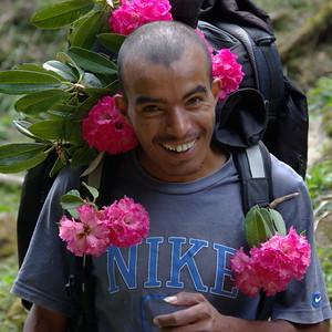 Трек в Горепани в самый красивый сезон цветения рододендронов