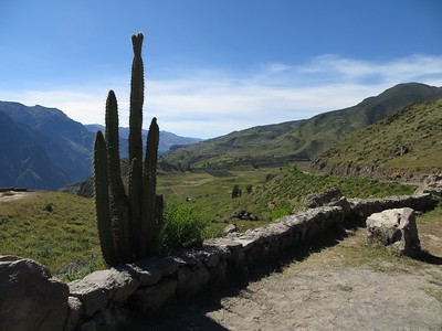 In Colca Valley