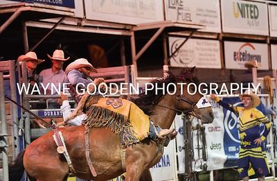 Wade Sundell Saddle Bronc