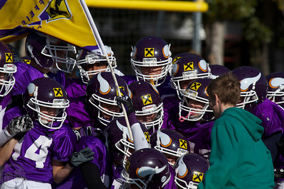 2013 American Football Vienna Vikings