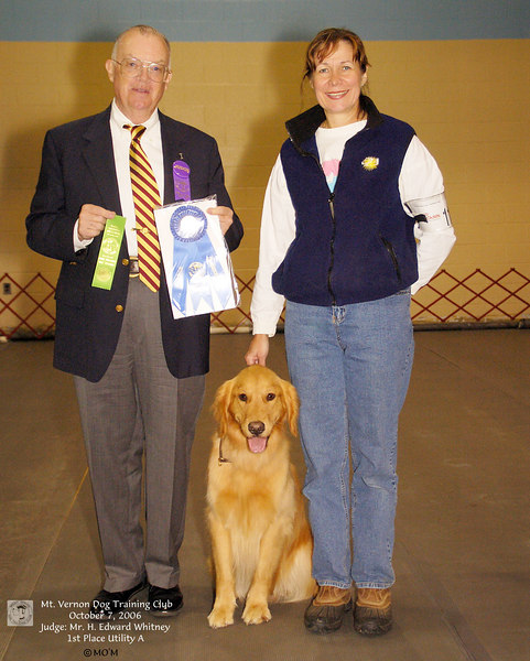 All-Breed Dog Shows
