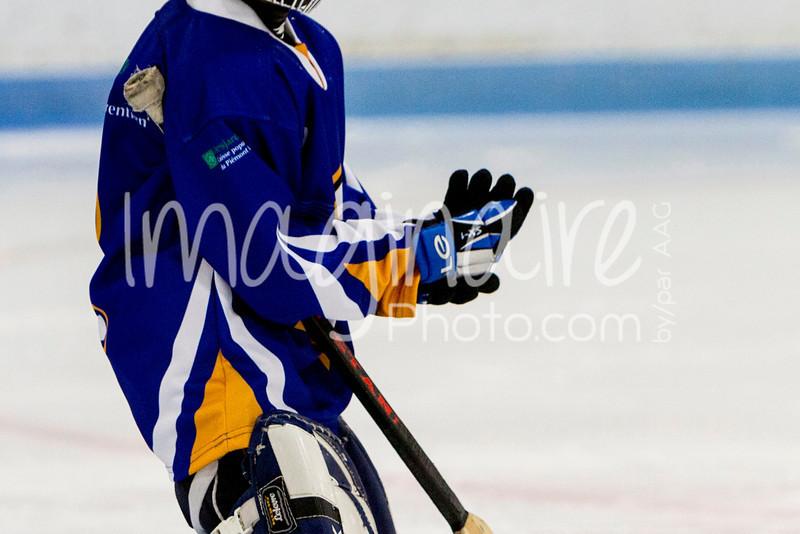 Rafales-Moustiques-1-Match-12-01-2014-0024.JPG