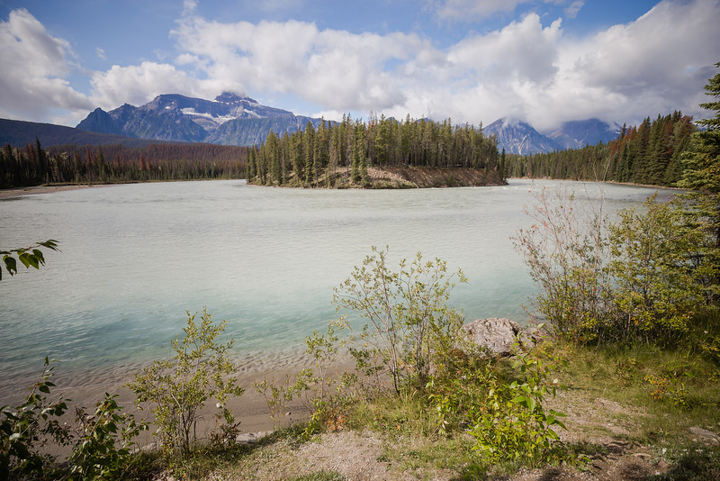 Athabasca River - Icefields Parkway