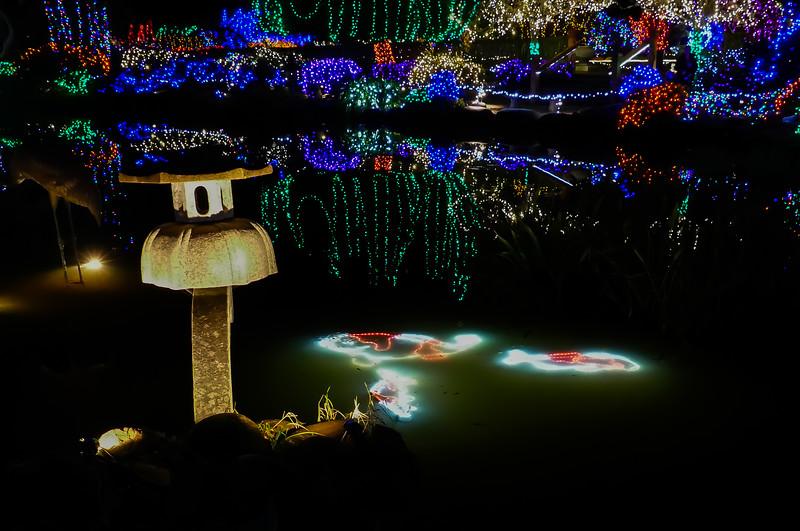 12-05-2019 Shore Acres Christmas Light Show (36 of 55).jpg