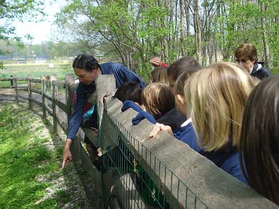 3V Earth Day Hike w/Mr. Newberger 4/19/12