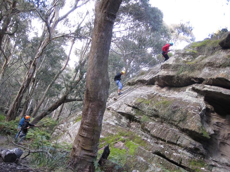 Sydney - Blue Mountains-276.JPG