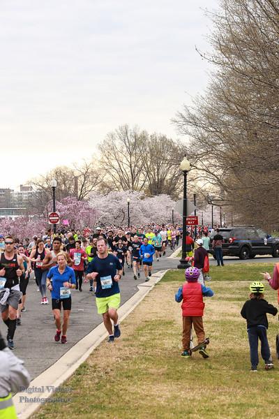 DC Cherry Blossoms 2019 042.jpg