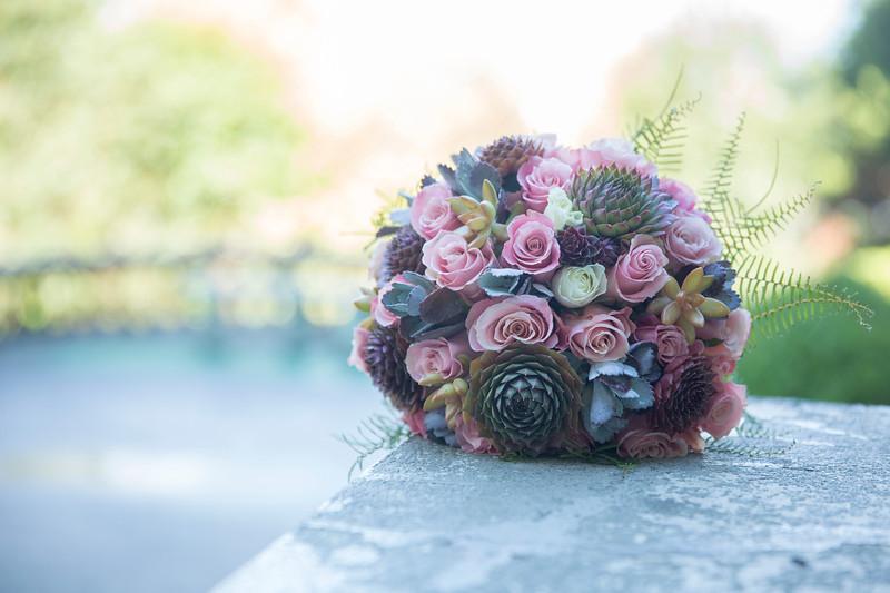 Flowers in the Morning Light-4864.JPG