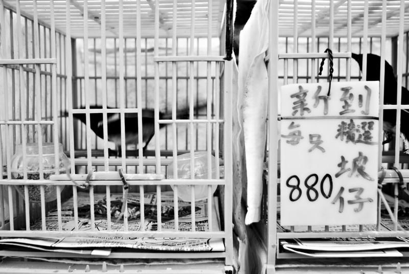 Hong Kong, China — May 2010