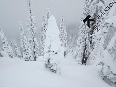 2012 Mike Wiegele Heli Skiing