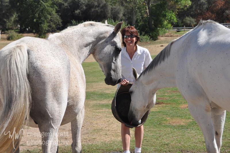 EB&Horses-013.jpg