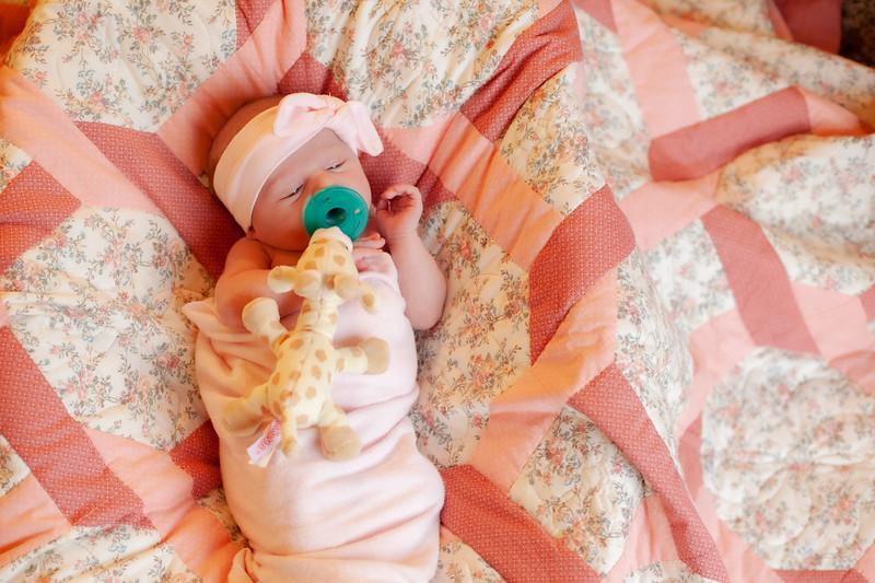 ALoraePhotography_BabyFinley_20200120_051.jpg