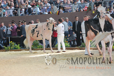 European Holstein Int Cows 2016
