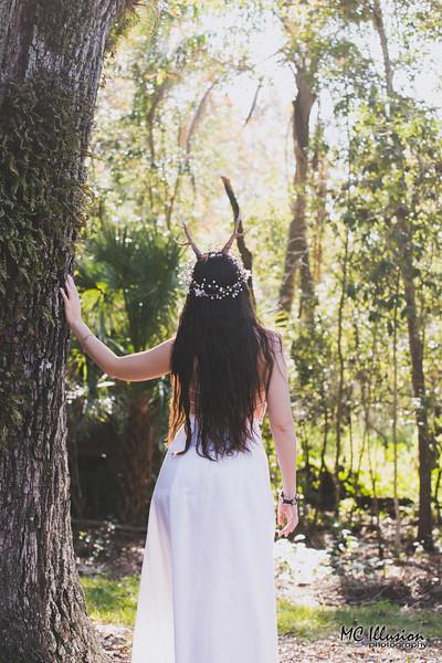 2016 12 03_Amy Mary Deer Forest_8967a1.jpg