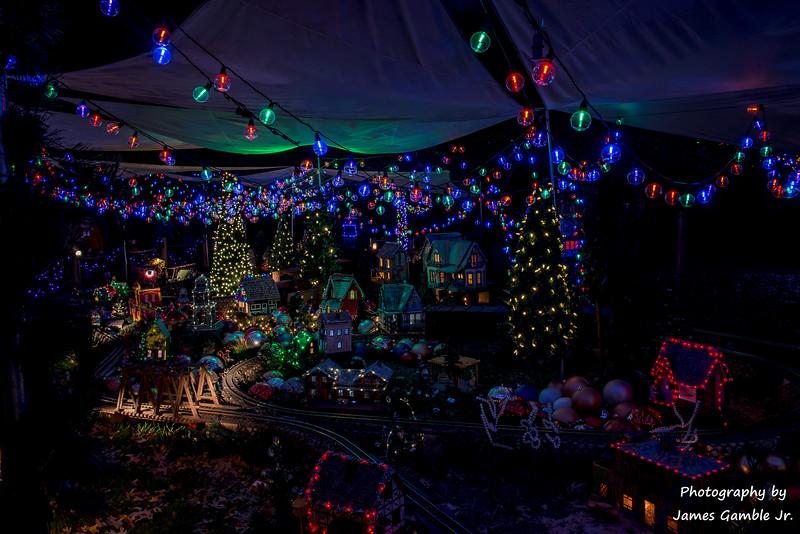 Houston-Zoo-Lights-3108.jpg