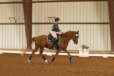 Horse 598