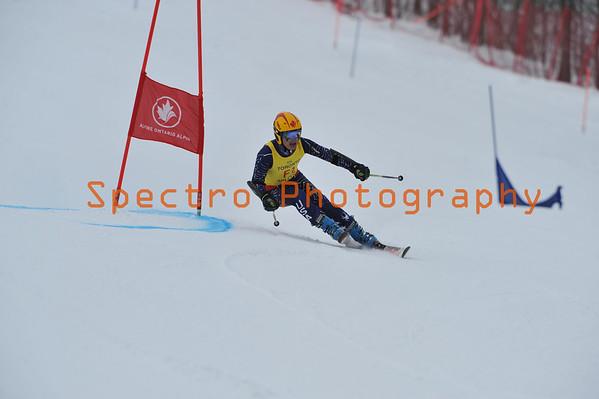 Ski Racing 2014