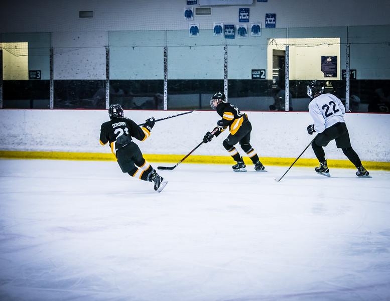 Bruins2-229.jpg