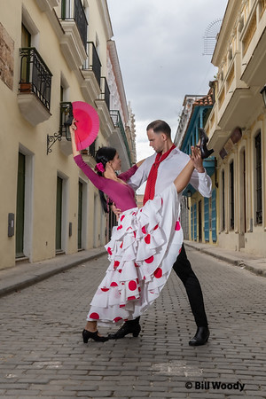 Cuba Dance in the Streets
