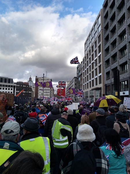 Brexit Betrayal Rally 8th December 2018