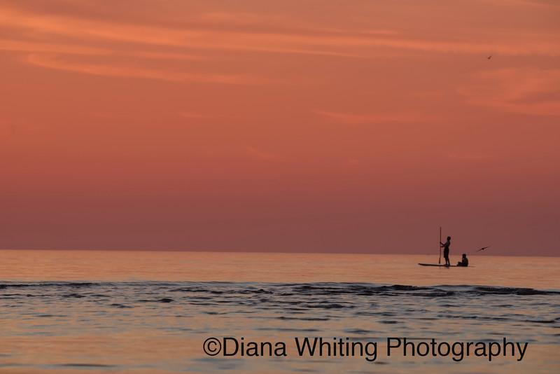 Paddle Boarding Lake Ontario