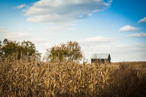 Farms & Landscapes