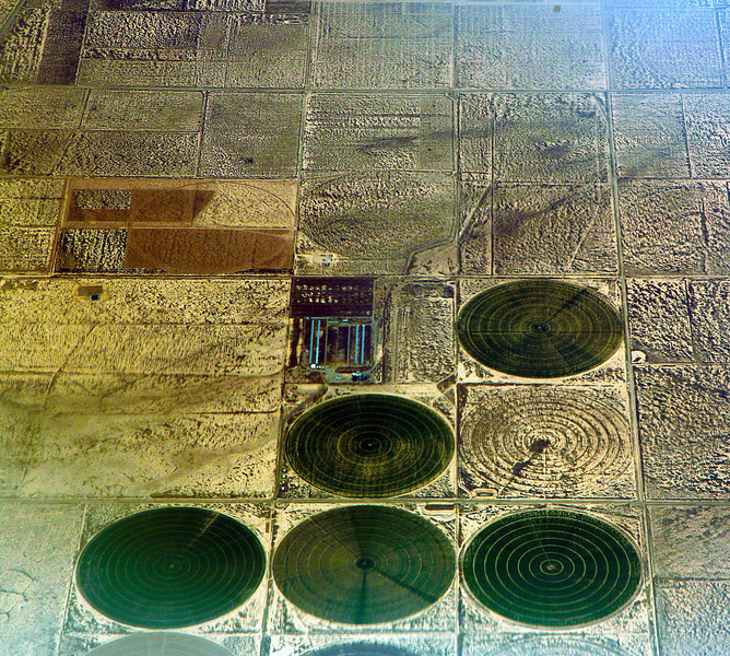 Irrigation circles on a West Texas farm
